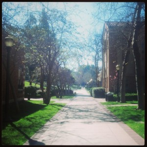UCLA - Photo by Crystal B. Shepeard