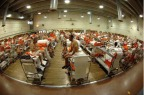 After Two Years, California's Prisoner Reduction Efforts Fall Short